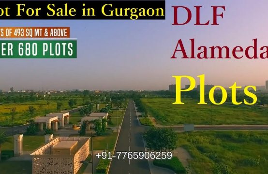 DLF Alameda Residential Plots & Land for Sale in Gurgaon