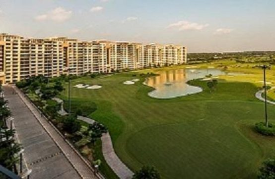 Apartment for Sale in Ambience Caitriona Gurgaon
